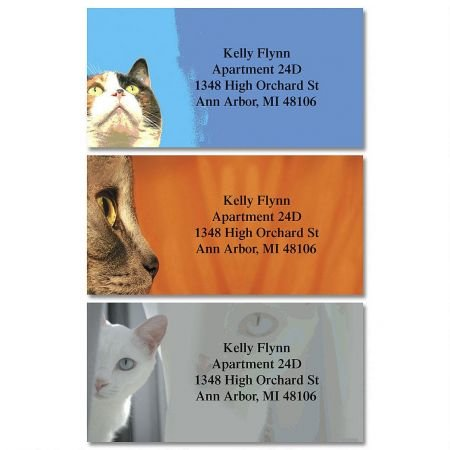Faces of Cats Personalized Border Return Address labels- Set of 144 1-1/8