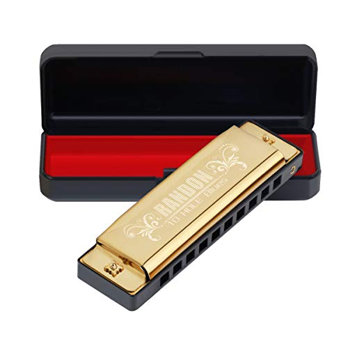 Randon Harmonica Blues Harmonica