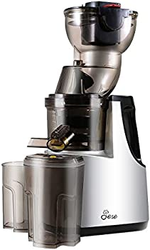 Jese JS-500A 250W 37RPMs Extra-slow Cold Press Juice Extractor