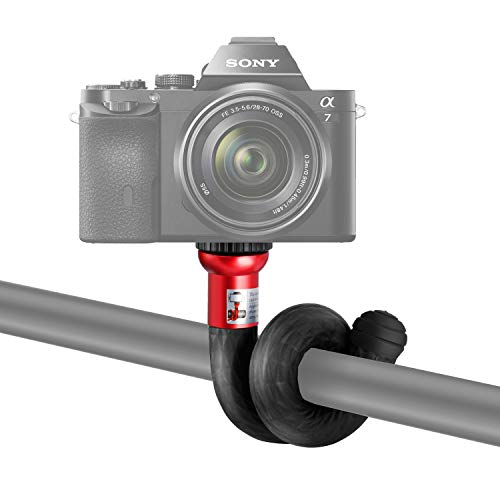 Best Underwater Digital Slr Camera - 9