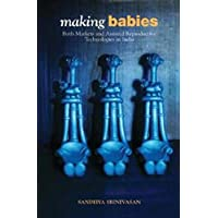 Making Babies: Birth Markets and Assisted Reproductive Technologies in India
