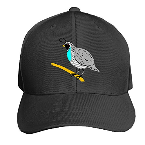 Bird Branch Wings Feathers Species Quail Printed Sandwich Baseball Cap for Unisex Adjustable Hat