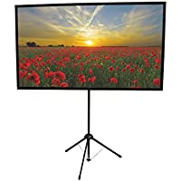 GO-60: 2-in-1 Projection Screen | 60 inch | Mounts on Tripod AND Wall | 16:9 format | 9 lbs | 2 minute setup | Includes Carrying Bag | For Mobile presentation and Home Entertainment |4K Ultra HD ready