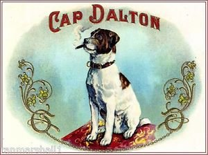 - MAGNET Cap Dalton Jack Russell Terrier Puppy Dog Vintage Cigar Box Crate Magnet Print