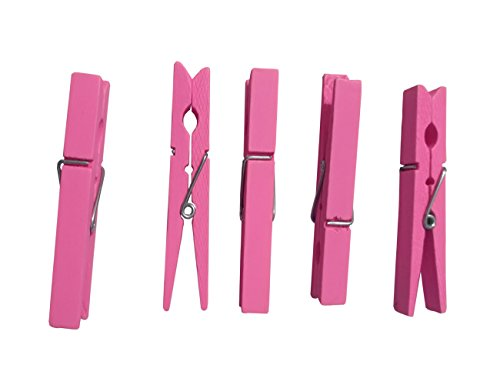 Wood Craft Clothespins Pegs Spring product image