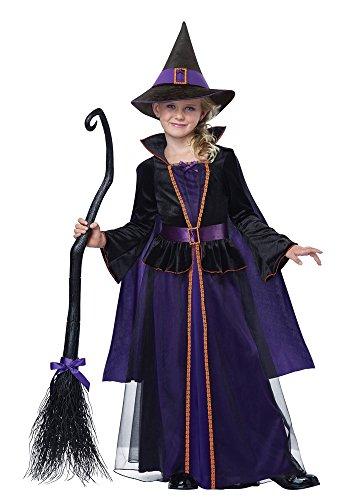 Kids Hocus Pocus Costumes (California Costumes Hocus Pocus Witch Girl Kids Halloween Costume (L))