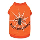 Zack and Zoey Cotton/Polyester Glow Web Design Dog Tee, Small/Medium, Orange, My Pet Supplies