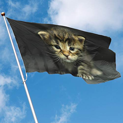 YUANSHAN Home Garden Flag Cats Kittens Dressed Up Polyester Flag Indoor/Outdoor Wall Banners Decorative Flag 3' X -