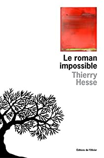 Le roman impossible, Hesse, Thierry
