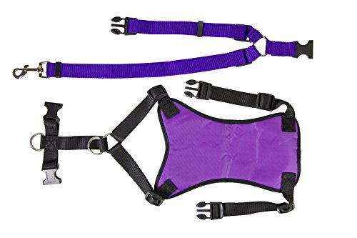 Petcessory Travel Harness with Leash Purple 14'' - 15'' by Petcessory (Image #1)