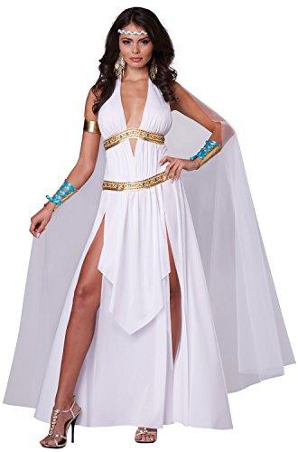 Medusa Costume Ideas (California Costumes Women's Glorious Goddess Sexy Long Gown Costume, White,)