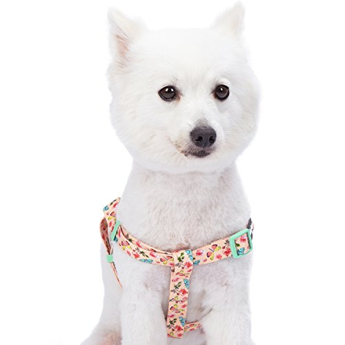 Blueberry Pet Step-in Spring Scent Inspired Rose and Butterfly Print Pastel Pink Dog Harness, Chest Girth 16.5 - 21.5, Small, Adjustable Harnesses for Dogs