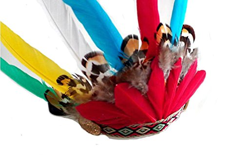 Hat Pet Costume - Dog hat-- Cat hat,Universal Native American Headdress for Pets,Indian-style For Halloween, dress-up parties (Red)