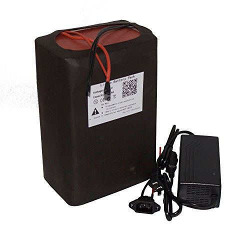 BTR 48V 30AH Ebike Lithium LiFePO4 Battery Pack with Charger for Motorcycle Electric Bicycle Scooter