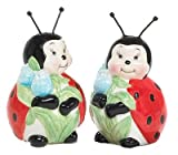 Adorable Ladybug Salt And Pepper Shakers For Kitchen Decor Great Gift Item