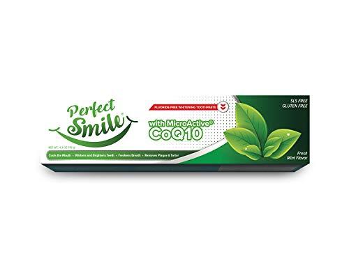 Perfect Smile Fluoride Free Toothpaste – 4.2oz