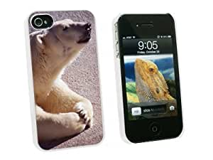 Graphics and More Polar Bear - Snap On Hard Protective Case for Apple iPhone 5 5s - White - Carrying Case - Non-Retail Packaging - White