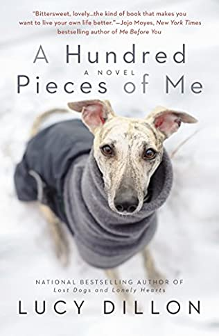 book cover of A Hundred Pieces of Me