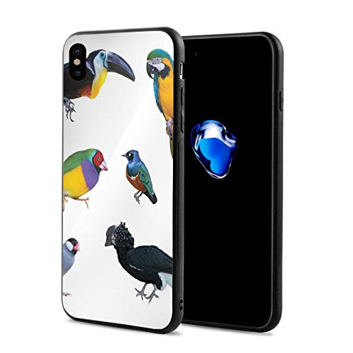 Phone Case Cover for iPhone X XS,Tropical Parrot Java Sparrow Bullfinch Toucan and Turaco Colorful Animal Collection,Compatible with iPhone X/XS 5.8 ()
