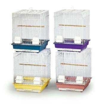 Prevue Pet Products BPVECONO1616 4-Pack Economy Cockatiel Cage, 16 by 16-Inch, Colors Vary (Economy Pet Crate)