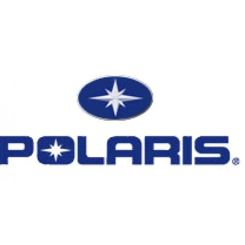 PURE POLARIS SEAL-OUTER CLUTCH COVER - GENUINE OEM 5521831 (Outer Cover Clutch)