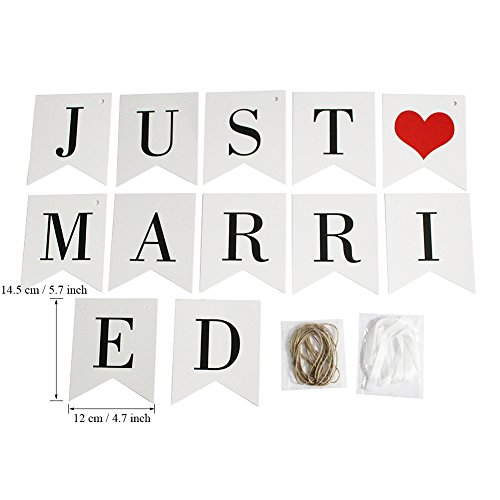 Vintage Just Married Banner Wedding Decor Bunting Photo Booth Props