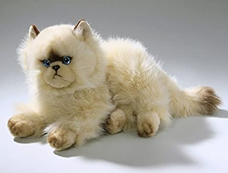 Amazon.com: Cat, Himalayan Chocolate Point, Persian 12 inches, 30cm, Plush Toy, Soft Toy, Stuffed Animal 3201: Toys & Games