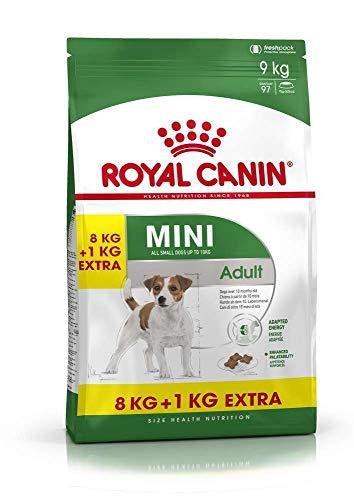 ROYAL CANIN Hundefutter Mini Adult, 8+1 kg gratis, 1er Pack (1 x 9 kg)