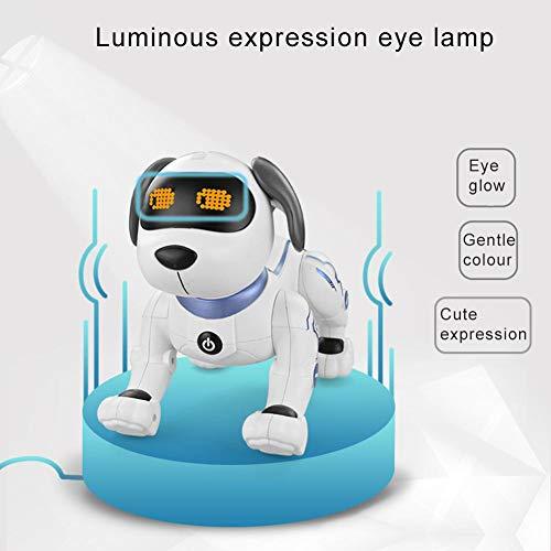 Luckyx Robot Inteligente para Mascotas, Juguete Interactivo ...