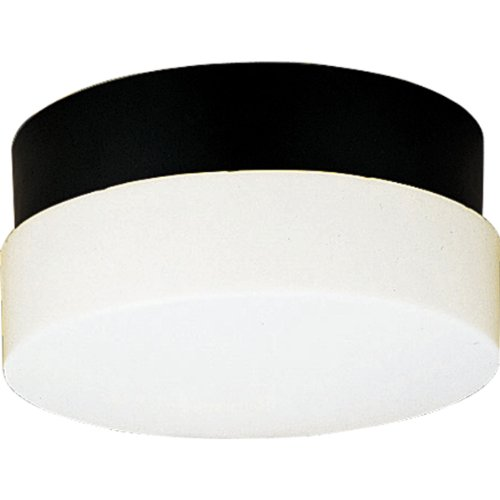 Progress Lighting P5711-31 Polycarbonate Light Mounted On Walls Only Indoors or Outdoors with No Color Fade, Black ()