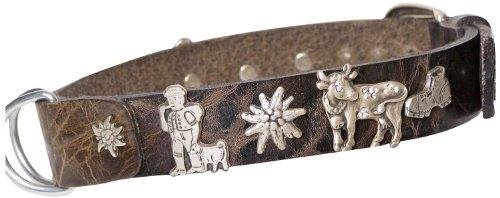 FRONHOFER Bavarian dog collar, edelweiss studded dog collar, lederhosen collar 17340, Color:Brown;Gr÷?e Hundehalsband:S Halsumfang 32 - 40 cm