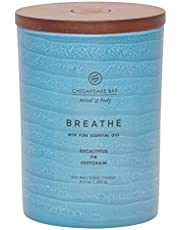 Chesapeake Bay Candle Mind & Body Serenity Scented Candle, Breathe with Pure Essential Oils (Eucalyptus, Fir, Petitgrain), Medium