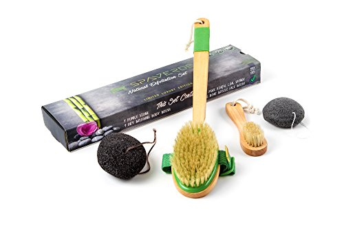 Body Brush for Dry Brushing - Natural Boar Bristle Dry Body Brush With Long Handle - FREE Lava Pumice Stone for Feet and Exfoliating Charcoal Konjac Sponge - Body & Face Brush Set for Skin Exfoliation