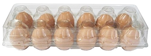 Clear Plastic Egg Cartons 12 Count, Set of 12 (Clear Plastic Egg)