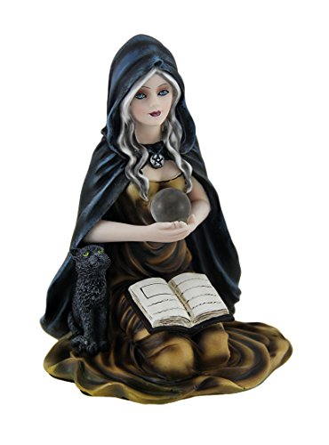 Zeckos Kneeling Witch Holding Crystal Ball w/Black Cat Figurine ()