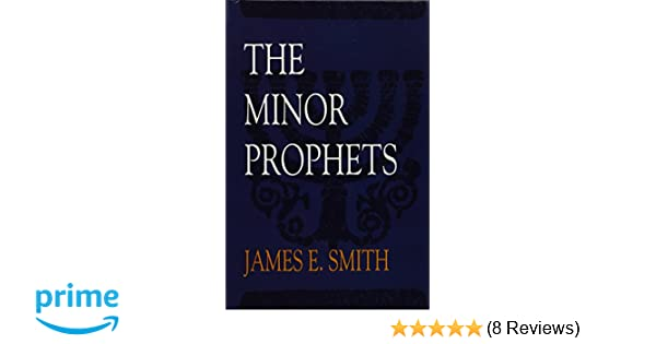 The Minor Prophets (Old Testament Survey): James E  Smith