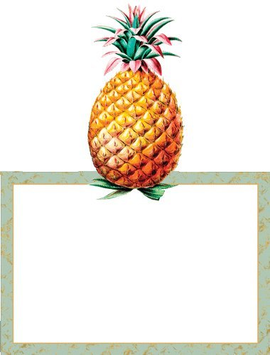Caspari Place Cards Thanksgiving Wedding Christmas No Placecard Holders Needed Fold Over Pineapple Decor Pk 16