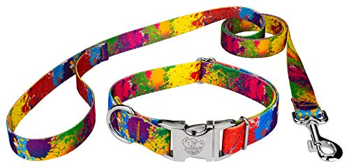 Premium Patterned Dog Collars - Country Brook Petz | Paint Splatter Premium Dog Collar and Leash Set - Groovy Collection with 5 Far Out Designs (1 Inch, Medium)