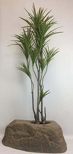- Outdoor Artificial UV Rated 6 ft Silk Dracaena Palm Tree with Lg Rock Planter