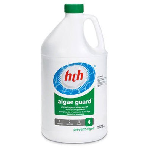 arch-chemical-hth-61119-algae-guard-1-gallon-single