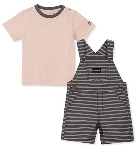 Calvin Klein Baby Boys 2 Pieces Shortall, Rose/Charcoal Stripes, 6-9 Months