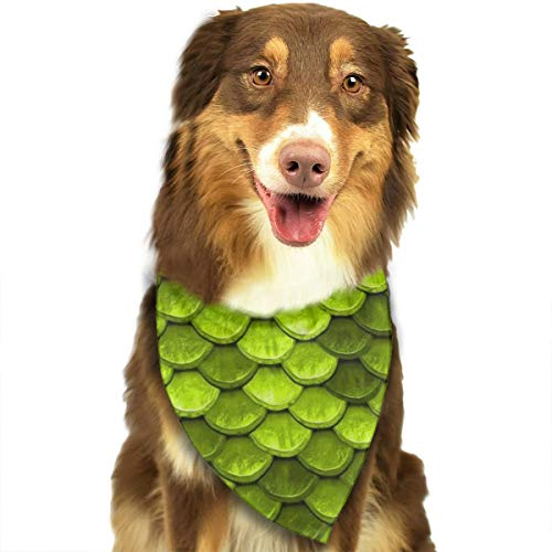 ROCKSKY Dog Bandanas, Soft Triangle Wedding Dog Bandana Scarf Bibs for Small Medium Large Dogs - Pet Headchief Hankie for Birthday Party, Wedding, Beautiful Lime Green Mermaid Fish Scales (Best Hot Dogs In Kansas City)