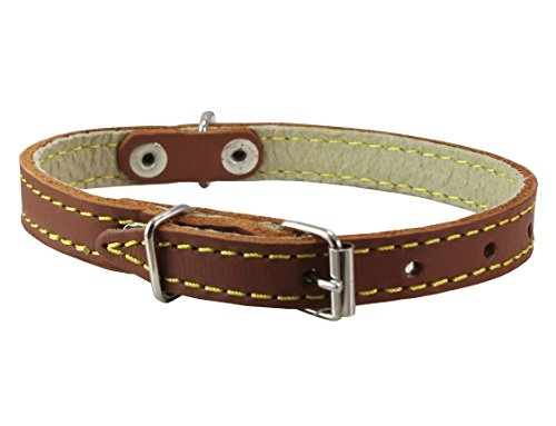 "Genuine Leather Dog Collar 9.5""-13"" Neck Size, 1/2"" Wide Chihuahua, Puppies"
