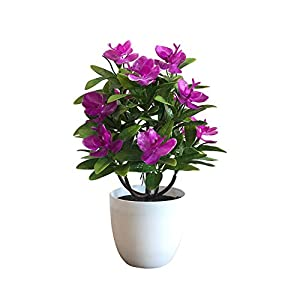 helegeSONG Fake Flowers Silk Plastic Artificial Plant 1Pc Potted Artificial Butterfly Orchid Flower Garden Wedding Party Decoration for Home,Office,Wedding,Garden, Pool, Gift, Hotel - Rose Red 93