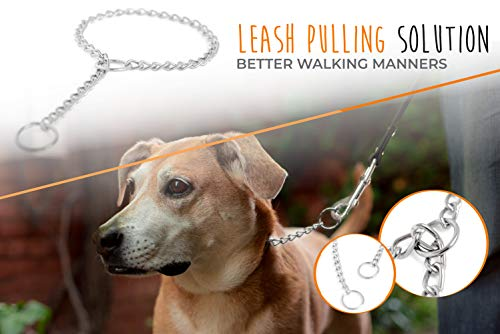 Mighty Paw Slip Collar. Premium Stainless Steel Choke Collar. Strong, Durable, Weather Proof, Tarnish Resistant Metal Chain. No Pull Dog Training Collar. (24)
