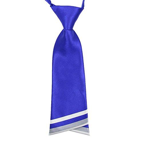 (Hanerdun Womens Bowtie Ladies Pre Tied Silk Necktie Costume Accessory Gift Idea)