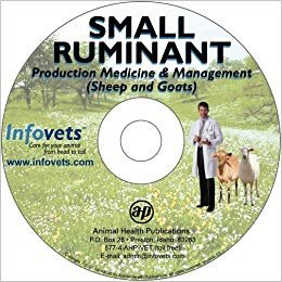 Small Ruminant - Production Medicine & Management (Sheep & Goat)
