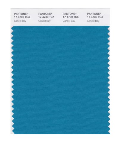 PANTONE Smart 17-4730X Color Swatch Card, Caneel Bay ()