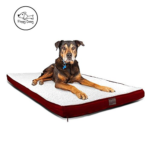Top Dawg Pet Supply Mat (Floppy Dawg Gel Memory Foam Dog Bed, Removable Cover, Waterproof Liner, Fits 42 Inch Crates. Royal Red Suede Sides and Back with White Sherpa Top.)