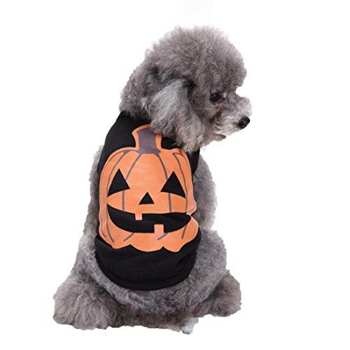 DEESEE(TM) Pet Dog Clothes Halloween Festivals Pumpkin Cotton Black Vest T-shirt Clothes (XL)